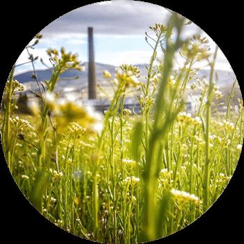 Služby firemní ekologie