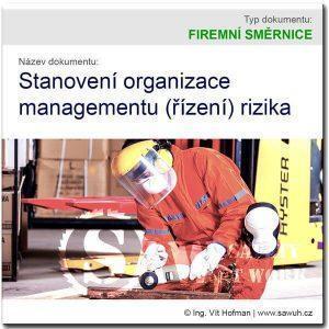 Stanovení organizace řízení rizika