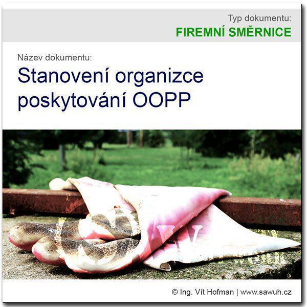 Stanovení organizace poskytování OOPP